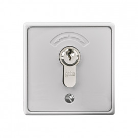 Schlüsseltaster Aufputz für Garagentore, TYP 4595, IP 54, 230V
