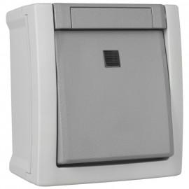 Taster, beleuchtet, Schließer, Aufputz, Feuchtraum, IP54, grau/dunkelgrau, Viko