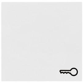 Schaltereinsatz Wippe für Taster Tür, SYSTEM 55 reinweiß glänzend