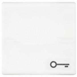 Schaltereinsatz Wippe für Taster, mit Symbol Tür, SERIE AS alpinweiß glänzend