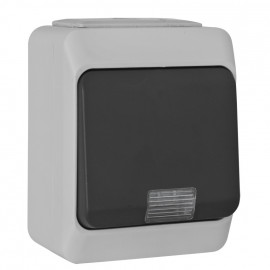 Schalter Kontroll Wechsel, mit Glimmlampe, IP44, NORTIC grau/anthrazit, Pollmann