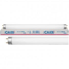 Leuchtstofflampe, T8, G13 / 10W, LF 640 Länge 330 mm